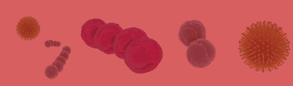Pharyngite, Laryngite et Angine | Elvirex SACHETS